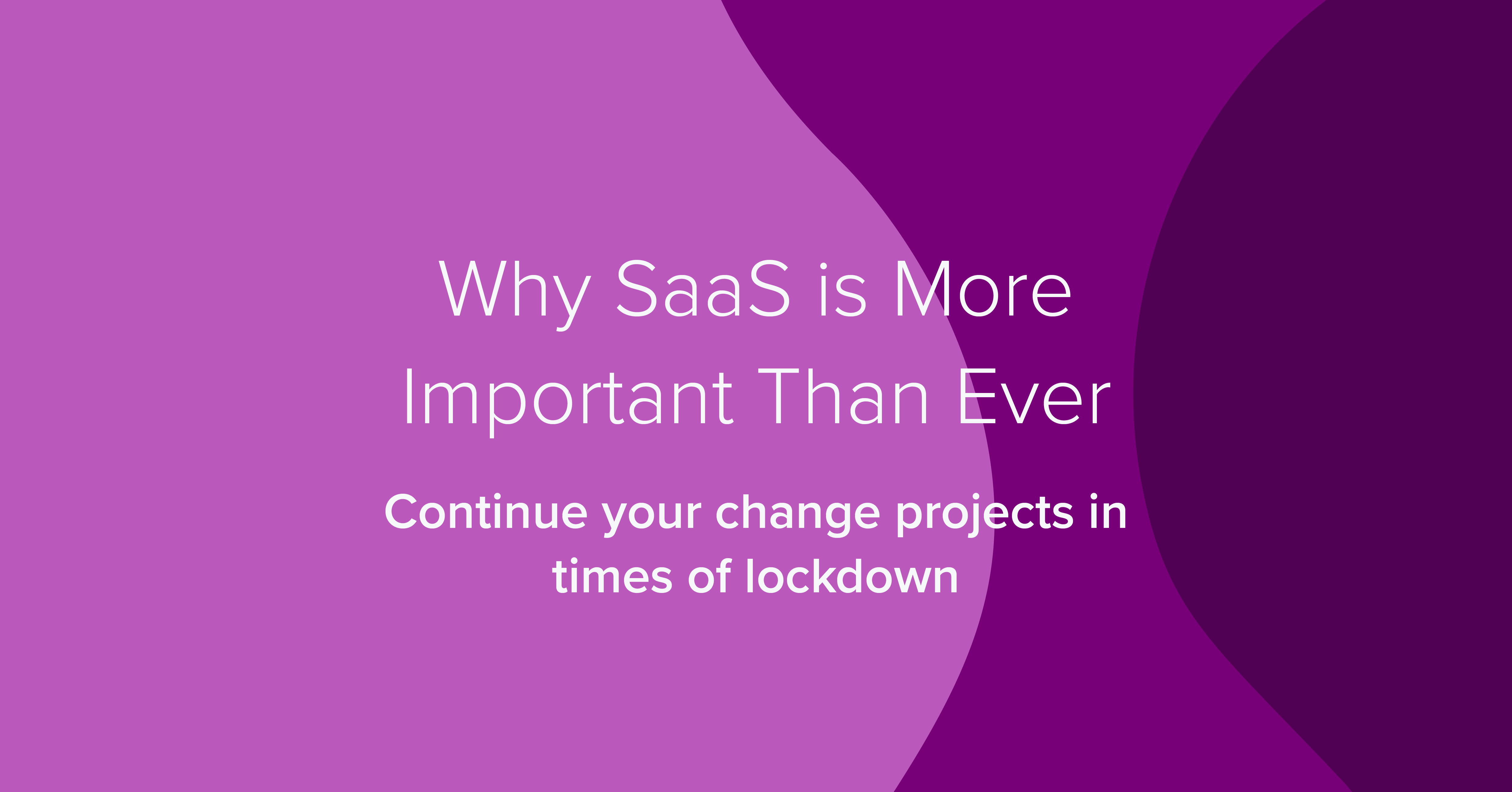 Why SaaS Is More Important Than Ever