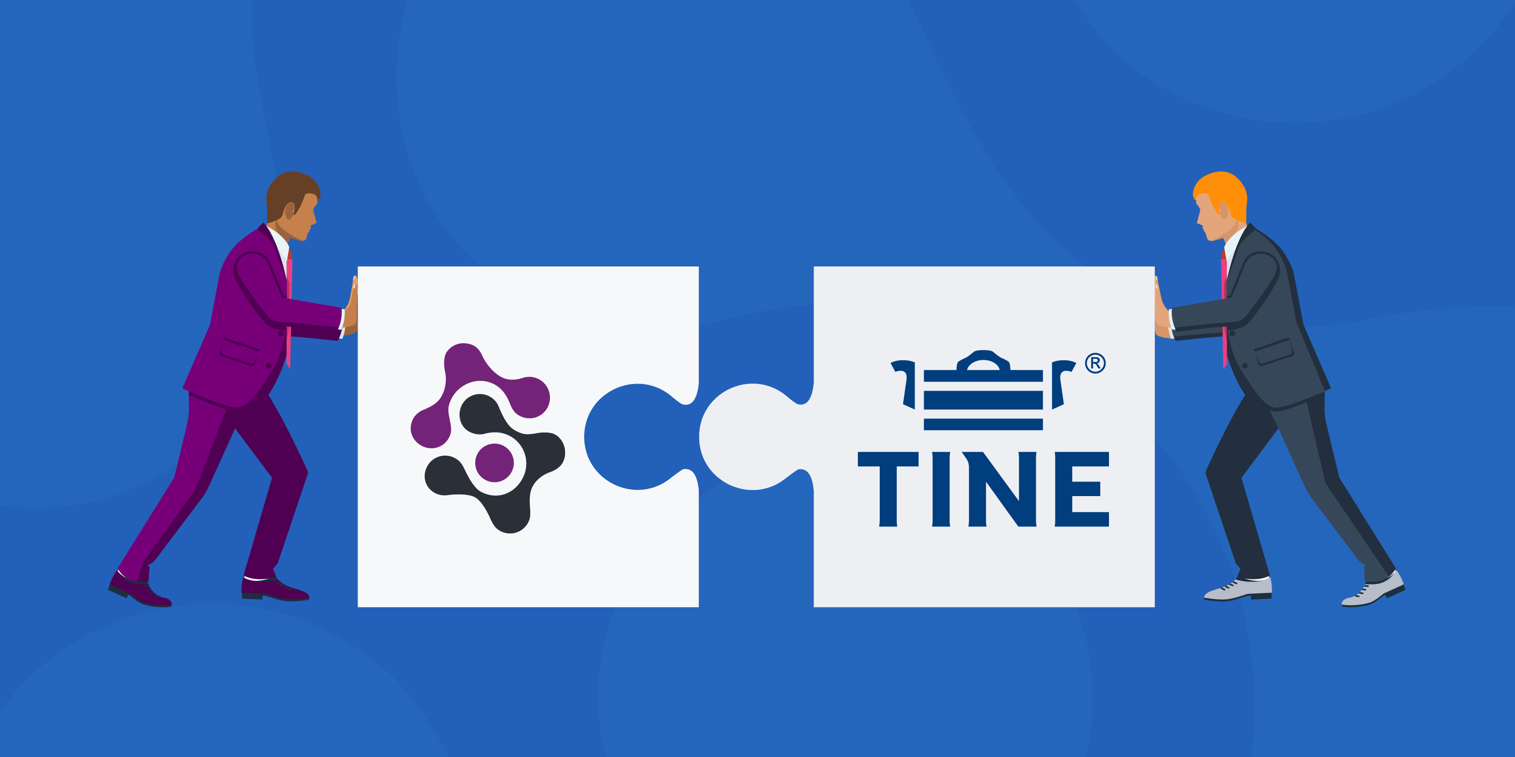 Advancing TINE's Digital Transformation Initiatives with Dynamic Data Models